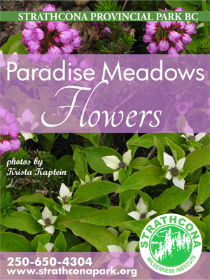 Paradise meadows flowers-new-cover-small