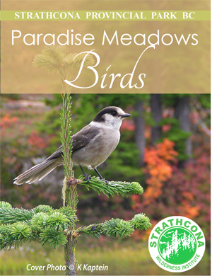 bird-front-second-edition-cover-crop-small