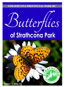 butterfly-brochure-front-small
